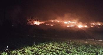 Hatay'da tarihi turistik bölgede yangın