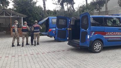 Kaçak yolla Türkiye'ye giren göçmenler kaza yapınca yakalandı