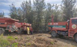 Hatay'daki orman yangınında 1 hektarlık alan zarar gördü