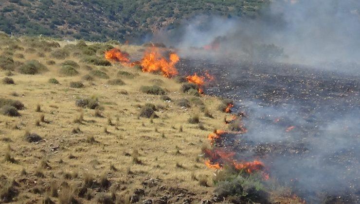 Hatay'da makilik yangını