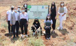 İTÜ ETA Vakfı Doğa Koleji doğayı giydiriyor