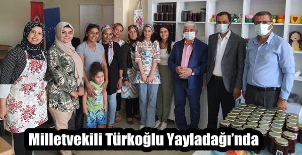 Milletvekili Türkoğlu Yayladağı'nda