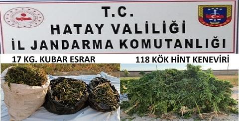 Samandağ'da jandarmadan uyuşturucu operasyonu