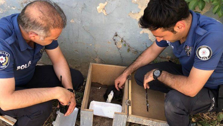 Ayağı kırılan yavru kedinin yardımına polisler yetişti