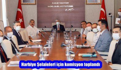 Harbiye Şelaleleri için komisyon toplandı