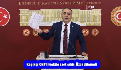 Kaşıkçı CHP'li vekile sert çıktı: Özür dilemeli