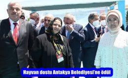 Hayvan dostu Antakya Belediyesi'ne ödül