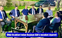 Ülkü Ocakları'ndan Başkan Gül'e nezaket ziyareti