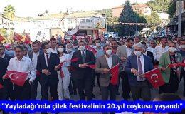 """""""Yayladağı'nda çilek festivalinin 20.yıl coşkusu yaşandı"""""""