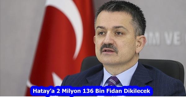 Hatay'a 2 Milyon 136 Bin Fidan Dikilecek